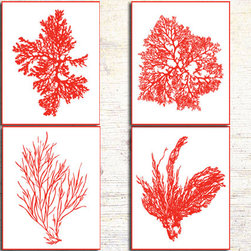 Coral Prints, Red Coral, Coral Artwork, Sea Weed, Algae Prints, Red Wall Art - Four 8x10 archival quality prints of antique sea coral, seaweed and sea kelp on a deep red coral pattern.