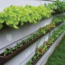 Container Gardening Options for Small Spaces (Slideshow) : TreeHugger