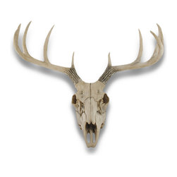 Zeckos - 10 Point Buck Deer Skull Bust Wall Hanging - This awesome, cold cast resin replica 10 point deer skull wall mount is a perfect addition to any Man Cave, den or rec room. The skull measures 21 inches tall, 19 inches wide and 12.1 inches deep. The detail is incredible, down to the growth plates and shape of the teeth. This deer skull is Brand New, and makes a great gift for any hunting fan or skull lover. The antlers are removable to save space in shipping.