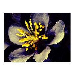 Studio D&K - Large Modern Art on Canvas • Bright Yellow and Dark Blue Wall Art, 16x20 - Large Modern Botanical Art on Canvas