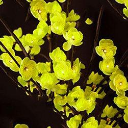 Green Plum Light - Small -