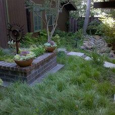 by Cassy Aoyagi, FormLA Landscaping