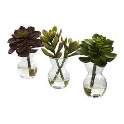 Succulent Arrangements (Set of 3) - We loooove succulents. The colors, the lushness, the soft shapes. . just looking at them brings a sense of peace and calm. This is a set of three distinct succulents, each in their own little vase, complete with liquid illusion faux water. Bring a fresh, clean look to any area (with three pieces, you have plenty of decorating options). perfect for home and office, and makes a great gift as well. Height= 5.5 - 6 In. x Width= 4 - 4.5 In. x Depth= 3 - 4 In.
