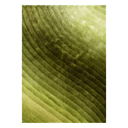 Rug - ~5 ft. x 7 ft. 3-D Shaggy Green Living Room Hand-tufted Area Rug - 3D SHAG COLLECTION