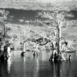 Surreal Sky - Black & White Photography Limited Edition Print - Winter morning on Blue Cypress Lake in Central Florida.