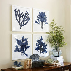 Beach Style Prints And Posters by Pottery Barn