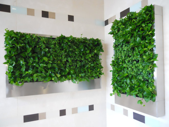 24 Creative Interior Green Wall Systems Rbservis Com