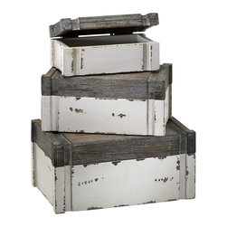 Cyan Design - Alder Boxes - Alder boxes - distressed white and gray