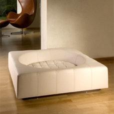 Modern Dog Beds by thepremiumpet.com