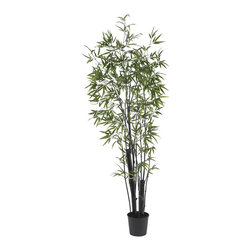 Nearly Natural - 6' Black Bamboo Silk Tree (2 Thick Trunks) - There is nothing quite like the gentle majesty of the Bamboo Tree. With its strong stalks and delicate leaves wistfully branching out in all directions, the Bamboo has captivated people the world over. And this perfect recreation of a thriving Bamboo Tree will add a touch of sophistication to any room (or yard.) Sporting 1,132 leaves and crafted from the finest materials, this amazing tree will bring you pleasure for years to come. Colors: Green; # of Trunks: 2 Thick Trunks; # of Leaves: 1132 Lvs; Pot Size: W: 9 in, H: 8 in. Height: 6.5 ft; Width: 30 in; Depth: 30 in.