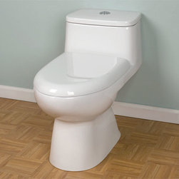 Low Profile DuBois Dual-Flush Elongated Siphonic REAR OUTLET One-Piece Toilet - - The DuBois Rear Outlet Toilet features an elongated seat, a concealed trapway and a low profile, one piece design that makes it perfect for a contemporary bathroom. The high efficiency, dual flush technology saves water and money.
