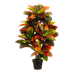 Silk Plants Direct - Silk Plants Direct Croton Plant (Pack of 2) - Pack of 2. Silk Plants Direct specializes in manufacturing, design and supply of the most life-like, premium quality artificial plants, trees, flowers, arrangements, topiaries and containers for home, office and commercial use. Our Croton Plant includes the following: