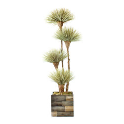 Dalmarko Designs - 4 Headed Natural Dracena Tree - Our exclusive Dracena tree is locally grown in California and handcrafted by our artisans with over 30 years of experience. This tree ships in a reclaimed wood planter.