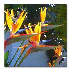 Trademark Fine Art - Amy Vangsgard, 'Bird of Paradise Backlit by Sun' Canvas - Artist: Amy Vangsgard Title: Bird of Paradise Backlit by Sun Product Type: Gallery-wrapped canvas art