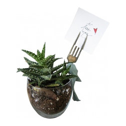 Foto display plant fork - Foto Forks are designed to display photographs of loved ones, reminders, or favorite cards in house or office plants. They are 7-in long and all vintage silverplate. A tea-stanied heart on the tine face and the word LOVE or GROW or BLOOM adds a rustic finish.