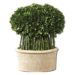Constance Lael-Linyard - Constance Lael-Linyard Preserved Boxwood Willow Topiary X-80106 - Preserved while freshly picked, natural evergreen foliage looks and feels like living boxwood arranged atop willow branches in a mossy, stone finished terracotta planter.