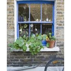 Window Ledge Idea.jpg