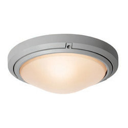 Access Lighting - Access Lighting C20355MGSATFSTEN1118BS Wet Location Ceiling Or Wall Fixture - Access Lighting C20355MGSATFSTEN1118BS Oceanus Wet Location Ceiling or Wall Fixture