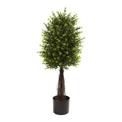 "35'' Ixora Topiary UV Resistant (Indoor/Outdoor) - The Ixora is one of the more interesting hedge-type trees, with a bold ""spiny"" look that seems both contemporary and classic at the same time. This Ixora is perfectly shaped to bring out the full effect of its more than 600 leaves that burst forth from its rather unique-looking trunk. Best of all, it'll stay this way without water or care, making it an ideal home or office decoration. Height= 35 In. x Width= 12 In. x Depth= 12 In."