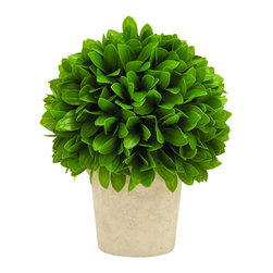 Benzara - Intricately Styled Vibrant Green Colored Vinyl Leaf Ball in Pot - The stunning Vinyl Leaf Ball in Pot features a modern design perfect for complementing contemporary settings. Beautifully crafted to include detailed design, this Leaf ball is styled intricately to give it a more appealing look. The Leaf Ball in Pot is versatile enough to blend in any kind of setting be it office or home. An attractive accessory, this can refresh the interiors by bringing a lively touch. With vibrant green leaves and a soft, cream pot you can place it on your corridor at home or office to add a touch of calmness. It comes with a dimension of 10 in.  H x 8 in.  W x 8 in.  D.