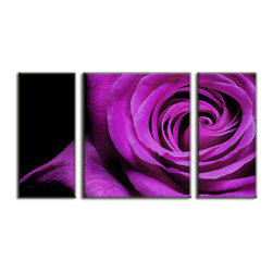 Vibrant Canvas Prints - Canvas Prints, Framed 3 Panel Sea Beach Tree Nature  Wall Picture - This is a beautiful, 100% quality cotton canvas print. This print is perfect for any home or office, and will make any room shine with its addition of color and beauty.  - Modern Home and Office Interior Decor   Flower Canvas Designs - 3 Panel Print   Purple Rose Flower Print on Canvas - Wall Art - 30 Day Money Back Guarantee.
