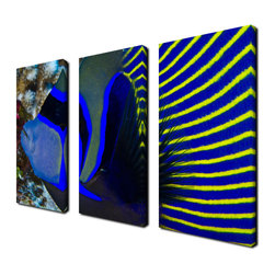 Ready2HangArt - Ready2hangart Chris Doherty 'Underwater Bleus' 3-piece Canvas Wall Art - The 'Underwater Bleu' 3-piece canvas art set depicts a fish in the glistening reefs with bursts of neon blue and yellow stripes. This 3-piece set features a tropical theme and is gallery-wrapped canvas for a contemporary look.