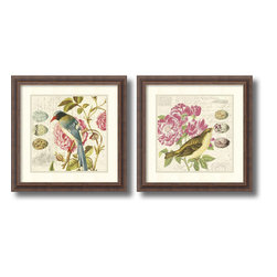 Amanti Art - Paula Scaletta 'Bird Study- set of 2' Framed Art Print 18 x 18-inch Each - Fill your home with birdsong and these charming feathered friends with the Bird Study 1 & 3 set by Paula Scaletta.