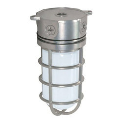 """Nuvo Lighting - Nuvo Lighting 76/624 Single Light 11"""" 100W Industrial Style Surface Mount Fixtur - Nuvo Lighting 76/624 Single Light 11"""" 100W Industrial Style Surface Mount Fixture with Frosted Glass Shade, in Metallic Silver FinishNuvo Lighting 76/624 Features:"""