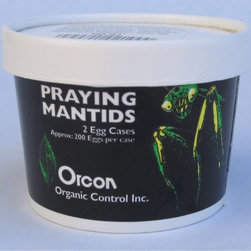 Orcon - Orcon Praying Mantid Eggs Multicolor - PM-C3 - Shop for Pest Control from Hayneedle.com! About Organic ControlFor 35 years Organic Control has been working as a friend of gardeners everywhere creating environmentally friendly methods of pest control. With a clear understanding of which bugs can help and which can hurt the growth of a producing plants Organic Control has expanded to product lines that repel not only insects but also mammals to help improve blooms and increase the yield on fruits nuts and vegetables. The award-winning team at Organic Control designs easy-to-use repellents that are long-lasting and effective.