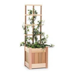 All Things Cedar Square Western Red Cedar Wood Planter Box - Climbing flowers and vines will be reaching for the sun with the All Things Cedar Square Western Red Cedar Wood Planter Box. This planter is made of sun-friendly Western red cedar hardwood that's sanded to be silky smooth. The generous water-loving planter is backed by a full width trellis to perfectly present your flowering vines. All edges are routed smooth to a soft, elegant corner. Handcrafted quality using hardwood dowels means tight fitting joints and years of beauty as the unstained wood ages with elegant grace.About Cedar WoodCedar wood is lightweight and resistant to both cracking and moisture rot. The oils of this resilient wood guard against insect attack and decay, and their distinctive aroma acts as a mild insect repellant. Cedar is a dependable choice for outdoor furniture, either as a finished or unfinished wood. Over time, unfinished cedar left outdoors will weather to a silvery gray patina. This natural process does not compromise the strength or integrity of the wood.Another great aspect of cedar is its environmental effect - which is minimal. A renewable resource, cedar wood emits low greenhouse gases. So rest assured knowing that your beautiful cedar furniture is a green choice, too!About All Things CedarA world leader in fine patio furniture, garden furniture, and other accessories, All Things Cedar is a smart choice for your outdoor needs. They offer an extensive line of unique items made from high-quality, weather-resistant woods, including clear-grade cedar, teak, and more. Their items are designed with care in timeless fashions that are sure to enhance your space. All Things Cedar prides themselves on fine customer service and dependable products.