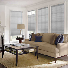Contemporary Window Blinds by Blinds Max