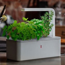 Click & Grow Smart Herb Garden - This herb garden uses plant cartridges to grow fresh herbs. The addition of an LED makes the gadget suitable for use regardless of available light.