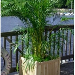 Square Wood Harbor Deck Planter - With spacious proportions the Harbor Deck Planter can accommodate larger garden center pots a wide assortment of cooking herbs or a personal vegetable garden. This planter is also cut out to handle small trees or shrubbery. It is ideal for meeting a variety of landscaping needs.This beautiful piece is made of quality cedar wood which will weather the elements. Cedar is naturally decay- and insect-resistant making it a great choice for any climate.