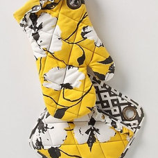 Contemporary Oven Mitts And Pot Holders by Anthropologie