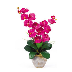 TwentyOne7 - Double Stem Phalaenopsis Silk Flower Arrangement, Beauty - This 25 in double stem phalaenopsis silk orchid flower arrangement is nothing short of an explosion of color. Expertly arranged, this piece was designed to enhance any space. Each silk flower arrangement comes stacked with two amazing phalaenopsis stems each with 6 flowers and 2 buds. Finished with a gorgeous glazed ceramic vase this item is not to be missed. So whether you're looking for a gift or just want to perfect your decor...you're only one click away.