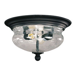 Z-Lite - 2 Light Outdoor Flushmount Ceiling Fixture with Clear Seedy Shade - Z-Lite 509F-BK 2 Light Flush Outdoor Close to Ceiling Light, Black This Z-Lite product has a black finish. For use with two 60-watt clear incandescent