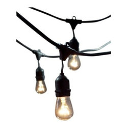 Bulbrite - Bulbrite String15/E26-S14KT Outdoor String Light w/ 15 Incandescent... - Bulbrite String15/E26-S14KT Outdoor String Light w/ 15 Incandescent Bulbs, 48' Included in the box: 1-Feet to 48-Feet long UL approved outdoor String, 15pcs 11S14C bulbPerfect for patio lighting, gazebos, porches, outdoor events, parties and restaurants/barsCommercial grade UL rated String light can withstand the wear and tear of outdoor useSpecs: 48-Feet cord, 15 E26 sockets, 1500W max, Bulbs - 11-watt, 63 lumens, 100 CRI, 2,500 hour average rated life, Medium (E26) BaseDimensions: Maximum Overall Length 48-Feet cord with 3-Feet spacing between each socket