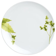 Modern Dinner Plates by Crate&Barrel