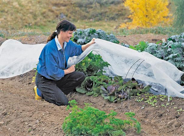 Gardening Tools by Gardener's Supply Company