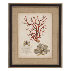 Paragon - Imperial Coral IV - Framed Art - Each product is custom made upon order so there might be small variations from the picture displayed. No two pieces are exactly alike.