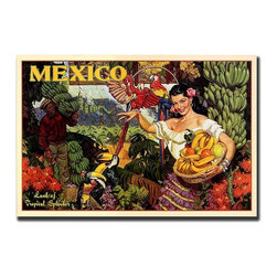 Trademark Global - Mexico Gallery Wrapped Canvas Wall Art - You can almost smell the sweet scent of the tropical fruit when you gaze into this fabulous Giclee reprint of a vintage travel poster.  Encouraging tourists to visit beautiful sunny Mexico, it features an exotic beauty and magnificently colored macaws and toucans.  This magnificent poster will have you ready to pack your bags and get your plane ticket. Giclee on canvas art. Ready to hang. Traditional style. Subject: Vintage. Format: Horizontal. Size: Large. Canvas material. 32 in. W x 24 in. H (5.25 lbs.)Giclee is an advanced printmaking process for creating high quality fine art reproductions. The attainable excellence that Giclee printmaking affords makes the reproduction virtually indistinguishable from the original artwork. The result is wide acceptance of Giclees by galleries, museums and private collectors.