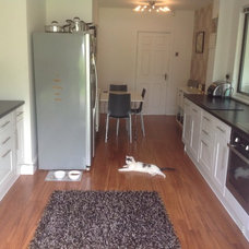 Cat looks happy in modern kitchen