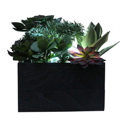 The Firefly Garden - Succulent Garden - Illuminated Floral Design, Large, Kiri Wood Vase - Succulent Garden combines gorgeous multi-colored succulents with various floral accents. Featuring a water lily and cymbidium orchid, this piece is perfect for a chic loft or outdoor gathering. Succulents are the latest contemporary floral trend and make beautiful centerpieces for weddings, outdoor gatherings or in a casual dining room.