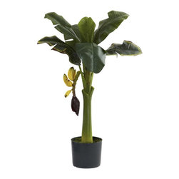 Nearly Natural - Artificial Banana Tree - Includes planter. Beautiful, lush leaves. Faux fruit. Bring the tropics indoors. Perfect for home or office. Made from silk. Green color. Planter: 6.5 in. Dia. x 5.25 in. H. Overall: 23 in. L x 23 in. W x 36 in. HHungry? Well, if so, we'd recommend heading for the fridge instead of this banana tree. Although we wouldn't blame you for trying to pick the fruit - it looks that real. With a strong center trunk, large leaves fanning out in every direction, and some low-hanging fruit begging to be picked, this faux banana tree is ideal for your eclectic d̩cor, be it home or office. makes an interesting gift as well.