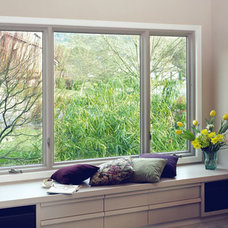 modern windows by Renewal by Andersen