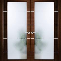 Contemporary Interior Doors Design Ideas Pictures