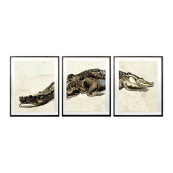 Hanriout Giraud Alligator Triptych 1 - A single study of a lean, hungry crocodile, with each scale and muscular shift expressively penned, is printed on three sheets of aged parchment, then broken by dark frames to form a more abstracted version of the sketch suitable to add personality and tone to the transitional home.  The three segments of the Hanriout Giraud Alligator Triptych are floated on linen for a cultured border.
