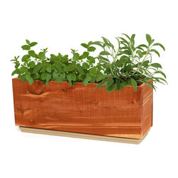 Windowsill Herb Planter - You'll always have fresh herbs nearby with this cedar herb planter box. Cedar resists rotting which makes it an ideal material for a garden box.