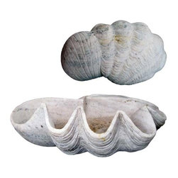 R.T. Facts - Carved Marble Shell Basin - You can almost smell the ocean air. This magnificent antique marble carved shell makes a splendid display piece all on its own, or fill it with your favorite small items for an extra-personal touch.