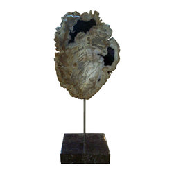Moe's Home Collection - Moe's Home Petrified Wood Sculpture on Black Marble Stand - Decorative table top sculpture